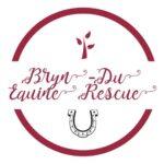 Bryn-du Equine rescue